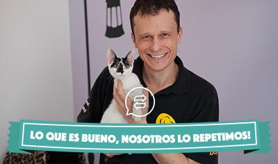 Cómo cuidar a los gatos, con Alexandre Rossi